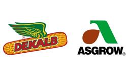 Bayer Dekalb Asgrow